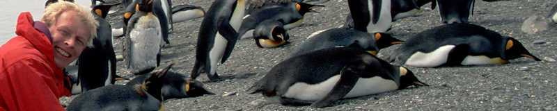 Photographer Allan Hansen and King Penguins